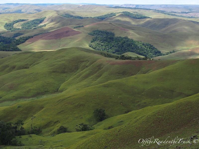 Gran Sabana: Yeşil Çöl