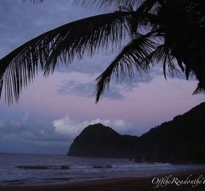 Venezuela-2: Orinoco Delta, Guacharo Magarası ve Karayip Sahilleri