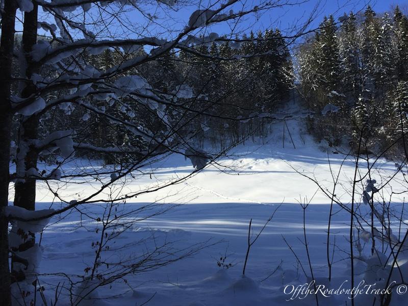 Partnachklamm sonrası karlarla kaplı muhteşem doğa
