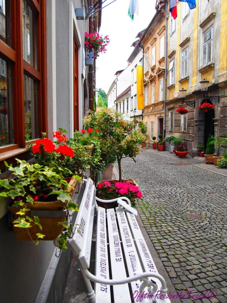 Slovenya-Ljubljana003