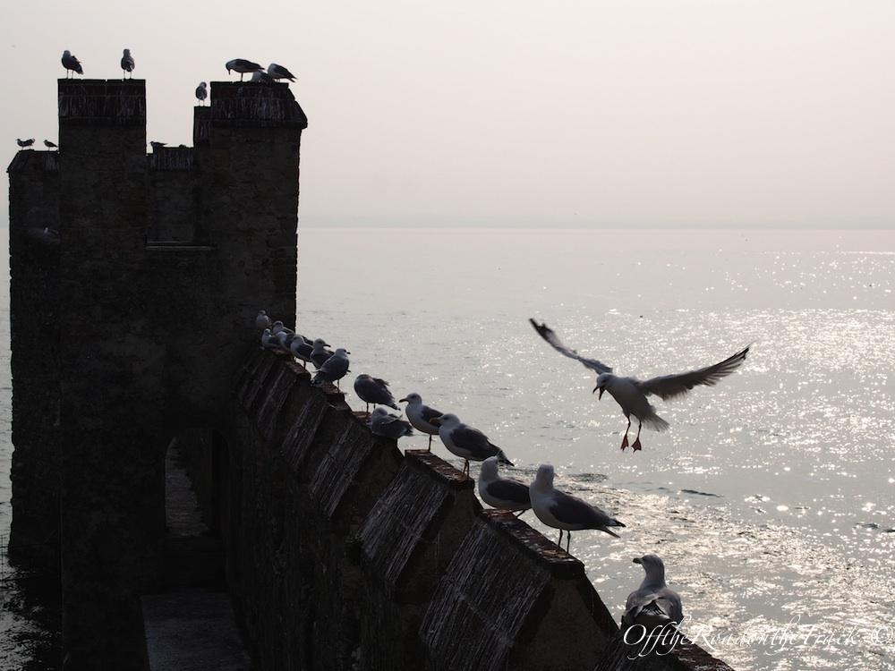 Sirmione kale surları ve özgürlük...