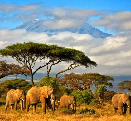 Yeni Rota: Afrika'nın İncisi Tanzanya