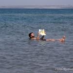 Ölü Deniz Ürdün