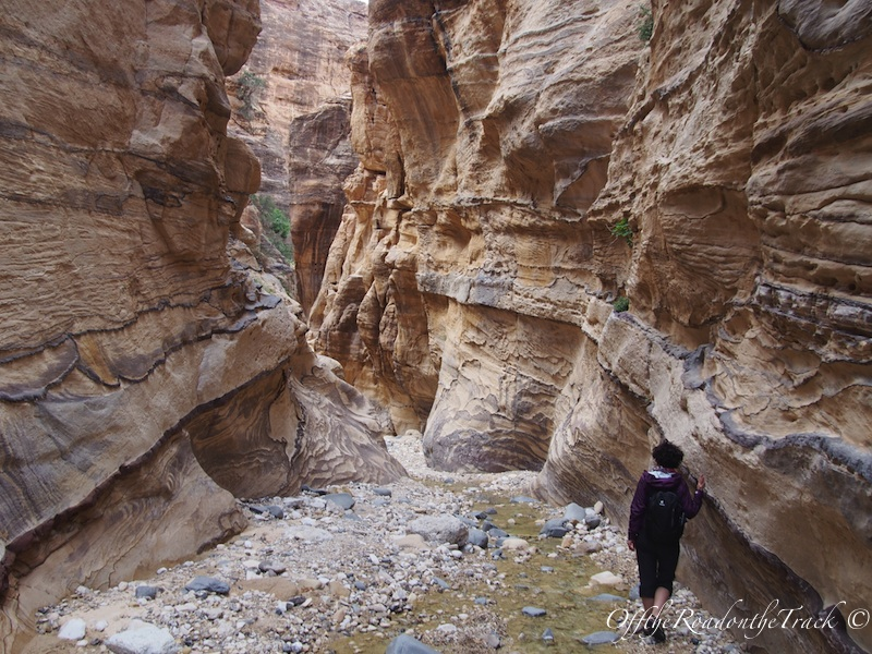 Ürdün Dana Doğa Yürüyüşü