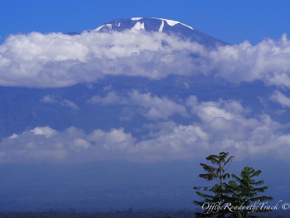 Kilimanjaro'yu ilk görüş