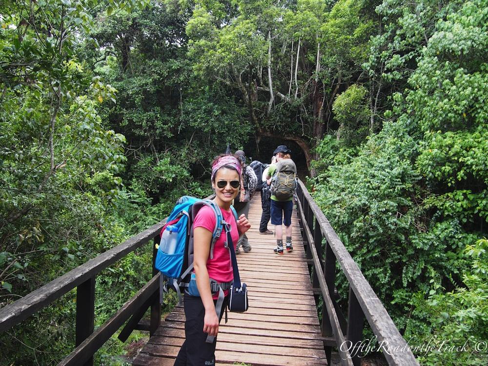 Kilimanjaro Tırmanışı - 1. Gün