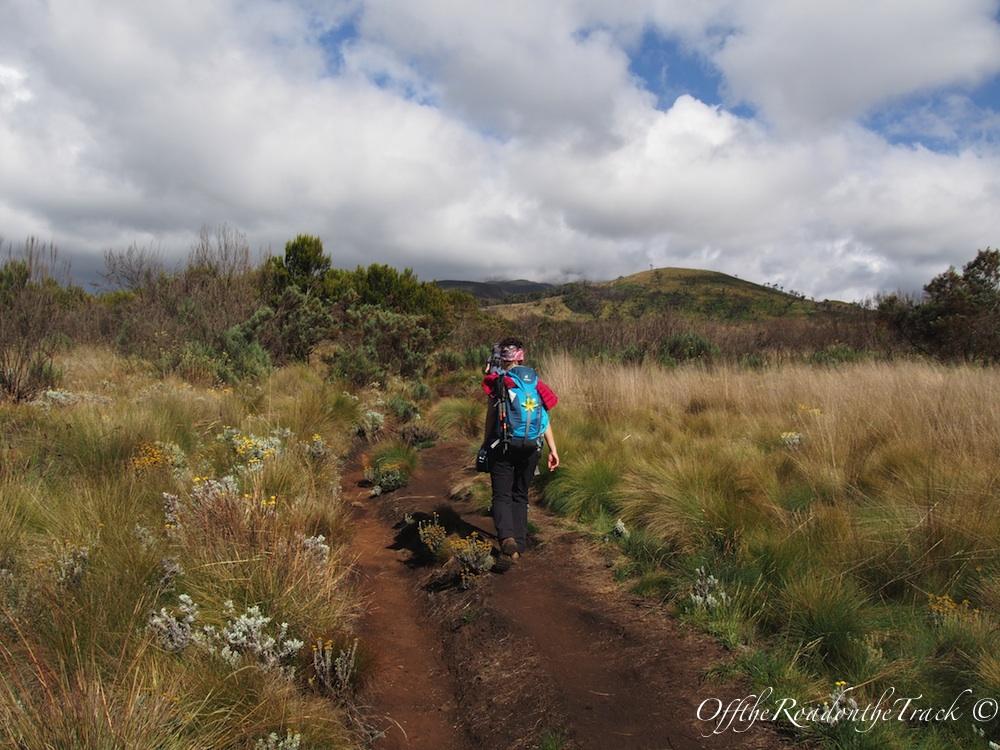 Kilimanjaro Tırmanışı - 2.Gün