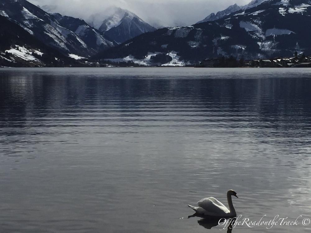 Gölün çevresindeki yürüyüşten bir kare