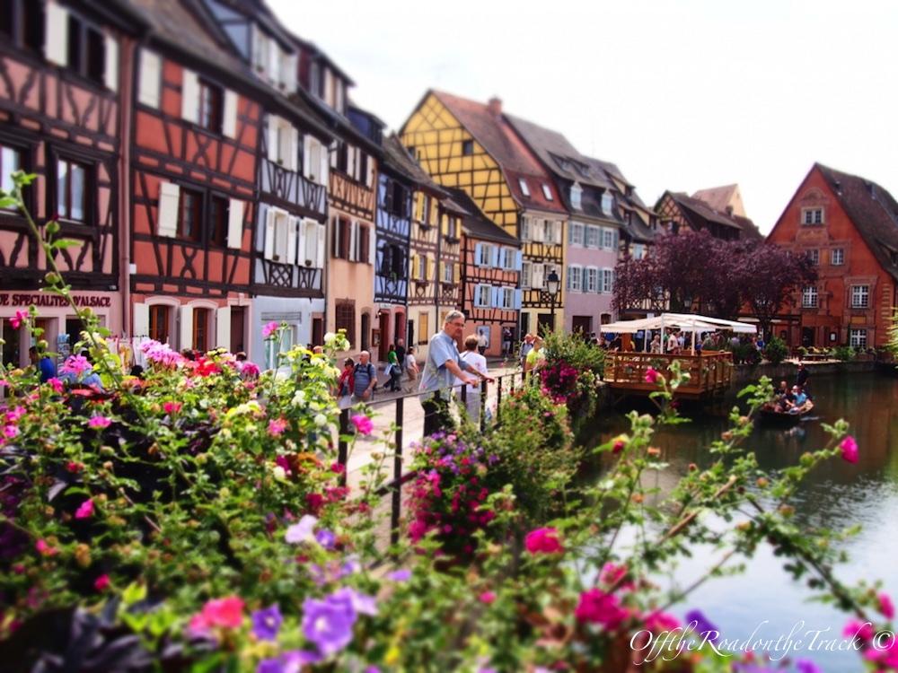 Colmar / Fransa Şarap Yolu