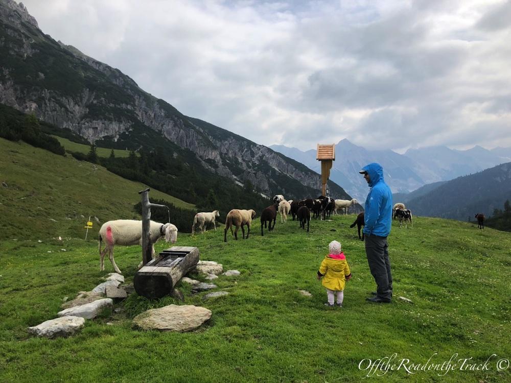Avusturya yaylalarında bol oksijenli bir hafta sonu (Solsteinhaus)