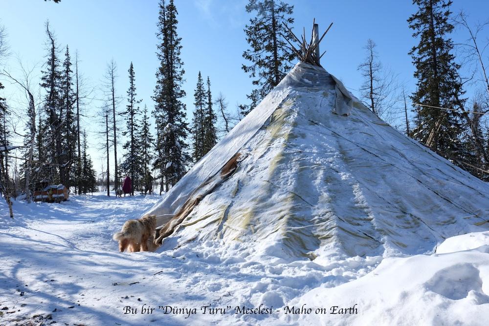 Arctic_Siberia_Nenets_Gocebe_Cadir_5-imp